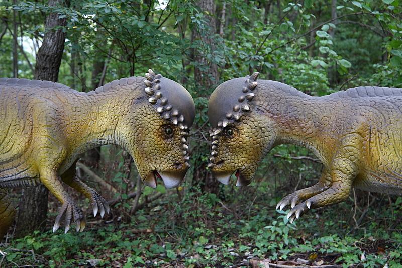 """FSWの森を活かした""""恐竜体験""""は想像以上に雰囲気もあり、サーキットに居ながら森林散歩&恐竜との遭遇ができるのは新鮮。所々にインスタ映えしそうな撮影ポイントもあり"""