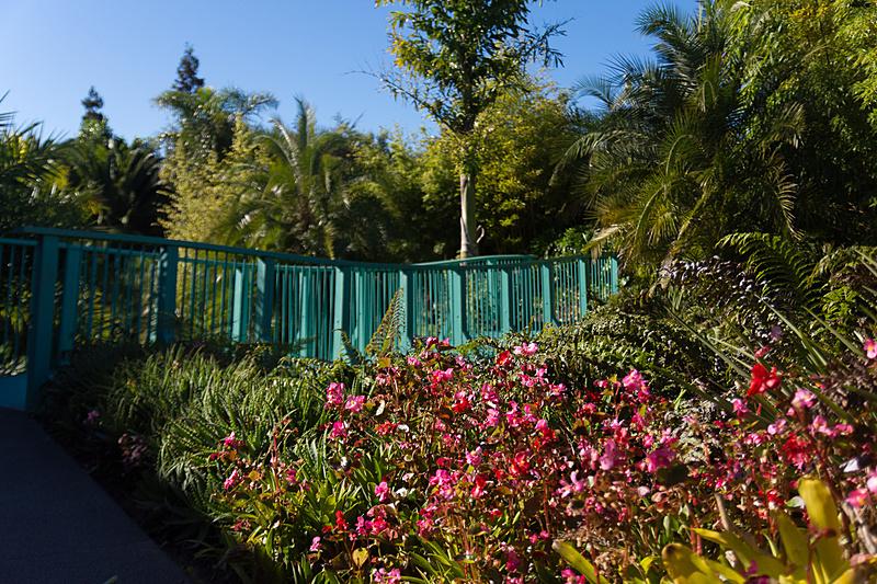 熱帯の草木を集めた「トロピカル・ガーデン(Tropical Garden)」。冬のある土地だけに、温水をかける設備などを整えている