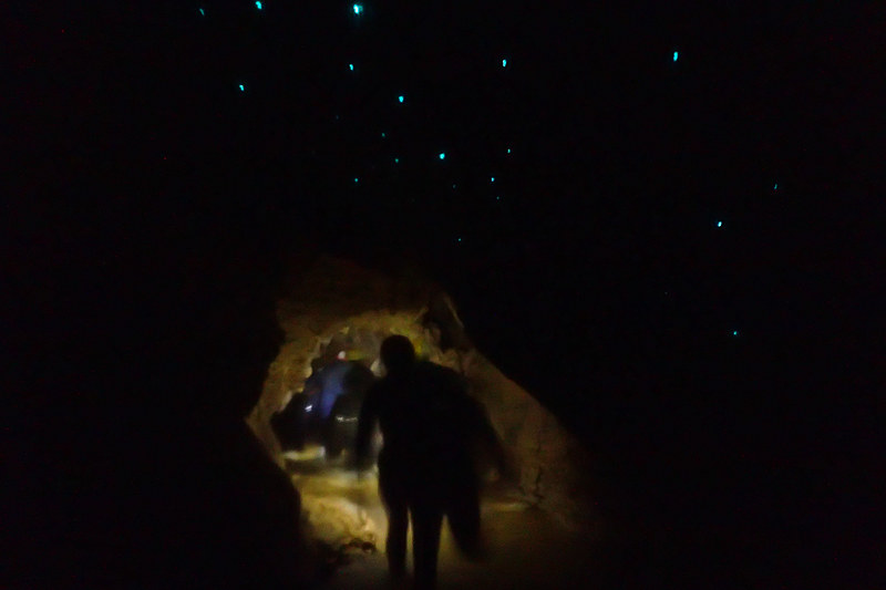 練習後は再びクルマに乗ってルアクリ洞窟へと移動。いざ洞窟内へ(写真:The Legendary Black Water Rafting)