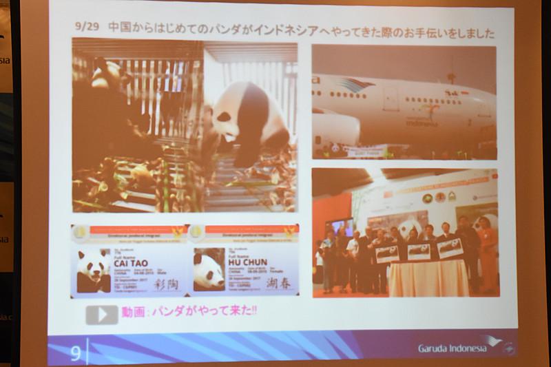 中国からパンダの輸送をガルーダ・インドネシア航空が担当し、国内はパンダフィーバーに