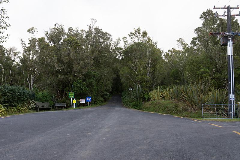 マンゴレイ・ロード(Mangorei Road)を山の方へ進んだ先。ここからは歩き