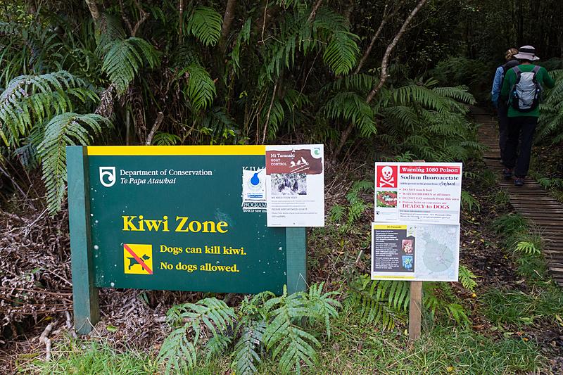 この先の森はニュージーランドの本来の生態系を壊す哺乳類の持ち込みが禁止されている