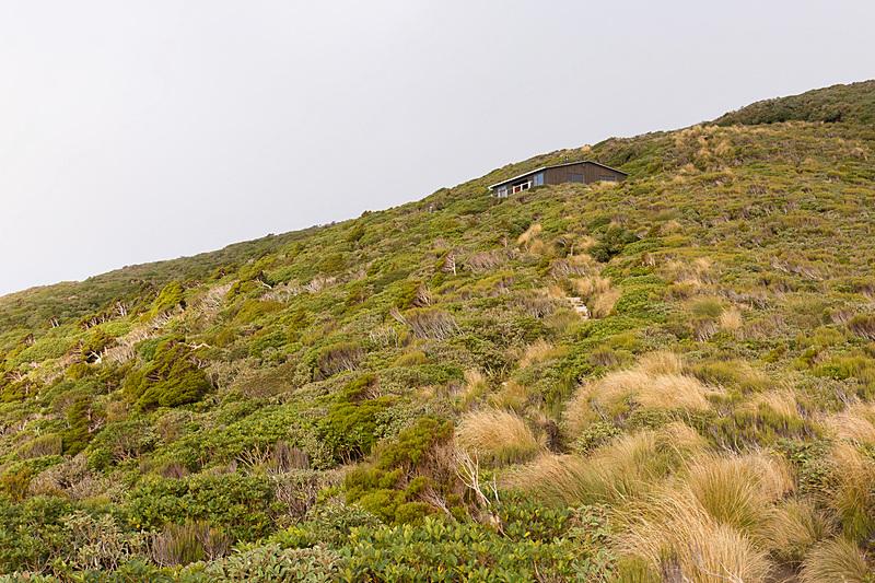 2時間ほどかけて、ようやくポウアカイ・ハット(Pouakai Hut)に到着