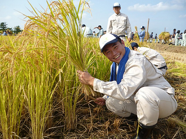 青森県の高校生が生産したお米を、ANAの国際線ファーストクラスで提供