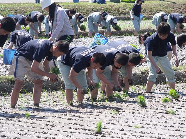 青森県立五所川原農林高校は、農業生産の国際基準であるグローバルGAP認証を取得