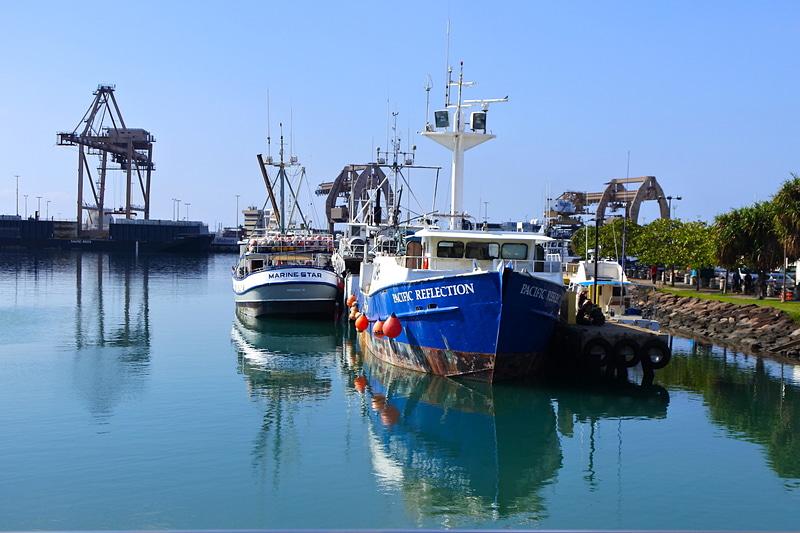 魚市場に隣接するPier 38に停泊する船