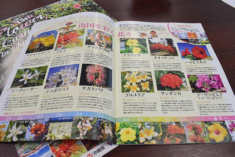 「沖縄花のカーニバル2018」のパンフレット。A5サイズで30ページ