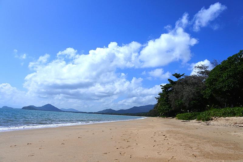 パームコーブのビーチを独り占め。贅沢過ぎるほどの瞬間だ