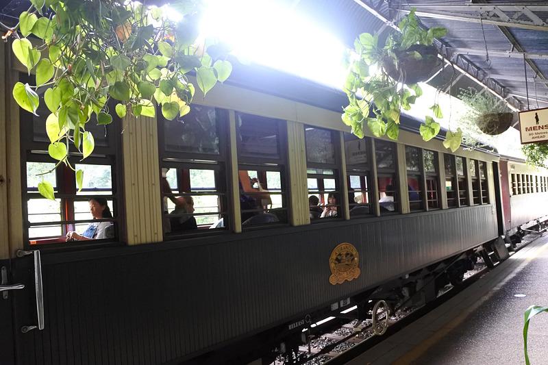 キュランダ観光鉄道で自然の雄大さを知る列車旅へ出発