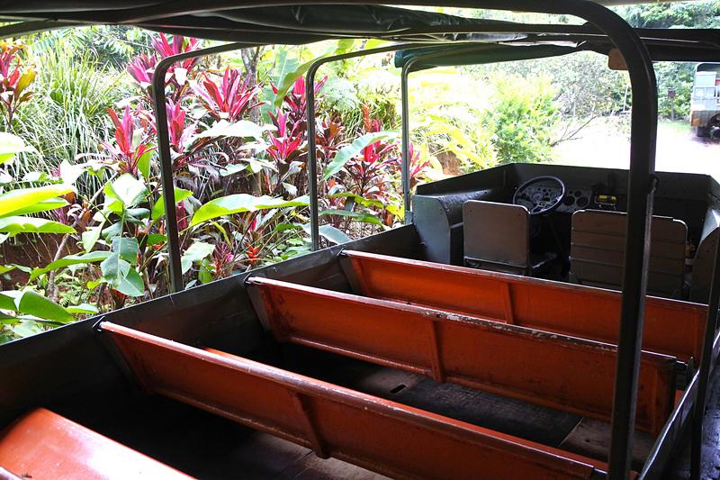 ベンチタイプの椅子が並ぶ車内。先頭にガイドが乗りツアーが始まる