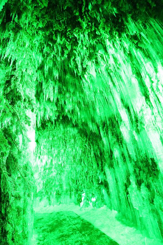 松の枝が使われた「苔の洞門」の内側。緑一色のすごい迫力に圧倒される