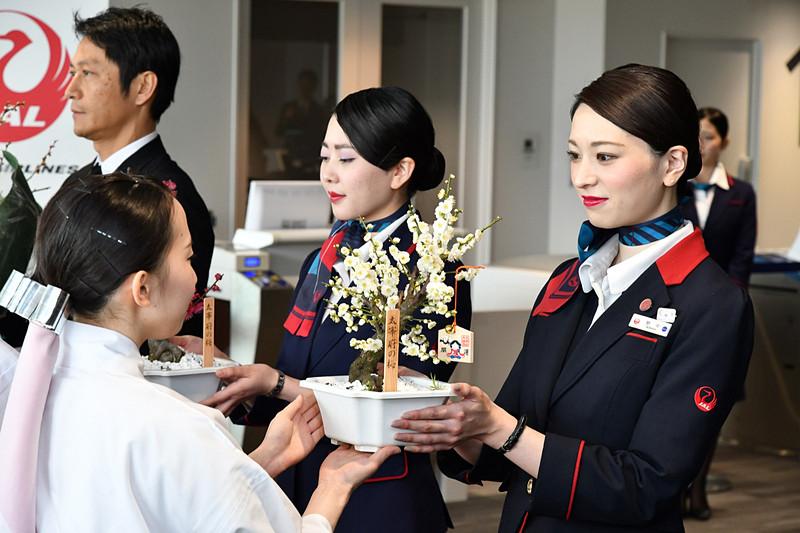 向かい合い、北海道へ運ぶ梅をJALスタッフに託す