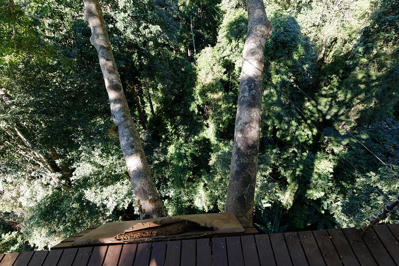 このコースの中で最も高いところにあるステーション。筆者自身それなりに高いところには耐性があると思っていたが、足場が狭いうえに木造ということもあって、ちょっと膝が笑っていたのはここだけの秘密