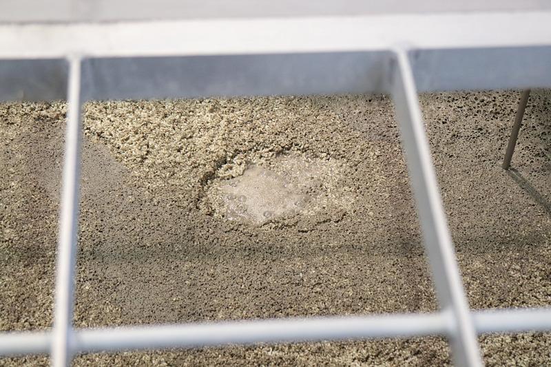 「一次仕込み」として「霧島裂罅水(きりしまれっかすい)」と呼ばれる地下水と酵母菌が加わり5日間寝かされて「酒母」と呼ばれる「1次もろみ」ができあがる