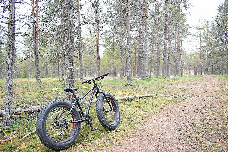 道があるようでないような森のなかをファットバイクで散策です