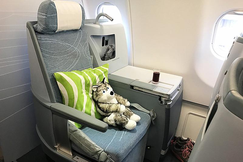 ビジネスクラスにドキドキのハス君。帰りはエアバス A330型機でした