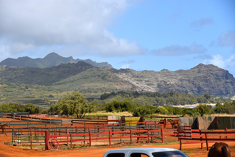 乗馬クラブの向こう側には雄大な山々が広がります