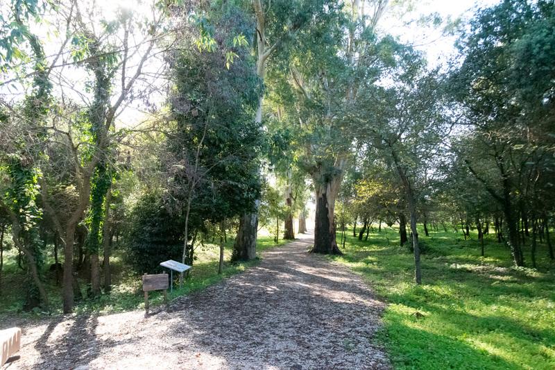 ブトリント国立公園として遺跡の散策路などもしっかり整備されている。森林のなかを進むので心地よい