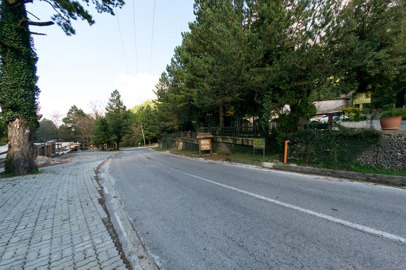 途中、ロガラ国立公園内のホテル&レストラン「ソフォ(Sofo)」でランチ。ロガラ国立公園内は針葉樹が並木のように沿道を覆う