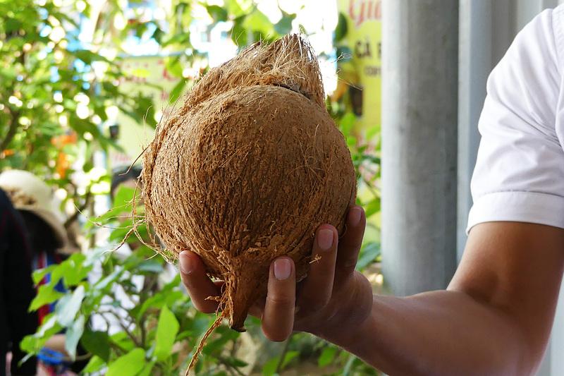 ご存じ、ココナッツ