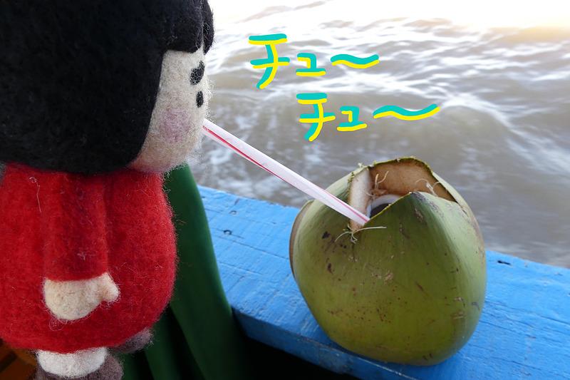 帰りのボートでいただいたぬるいココナッツジュース