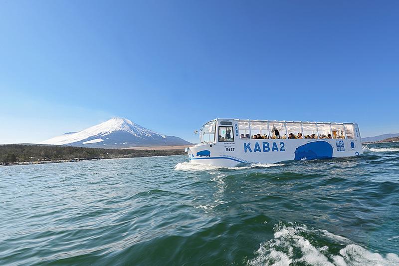 山中湖をクルージングする水陸両用バス「YAMANAKAKO NO KABA」(イメージ)