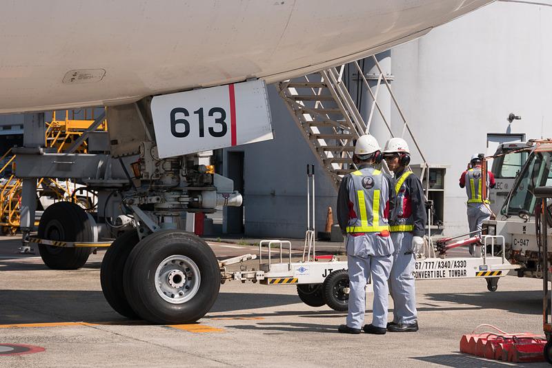 地上で出発の準備をするJAL311便。ここでも男性だけが携わっている