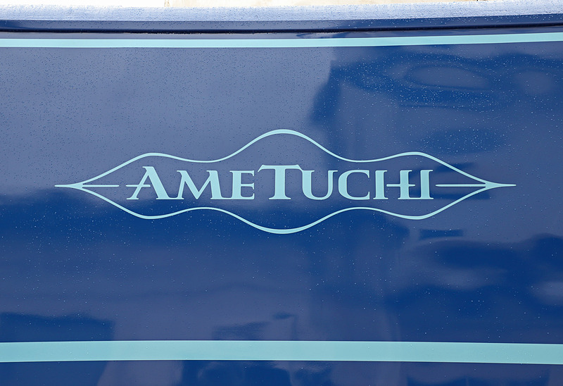 車体側面のエンブレムとロゴ。ヘッドマークも同様のものが取り付けられている
