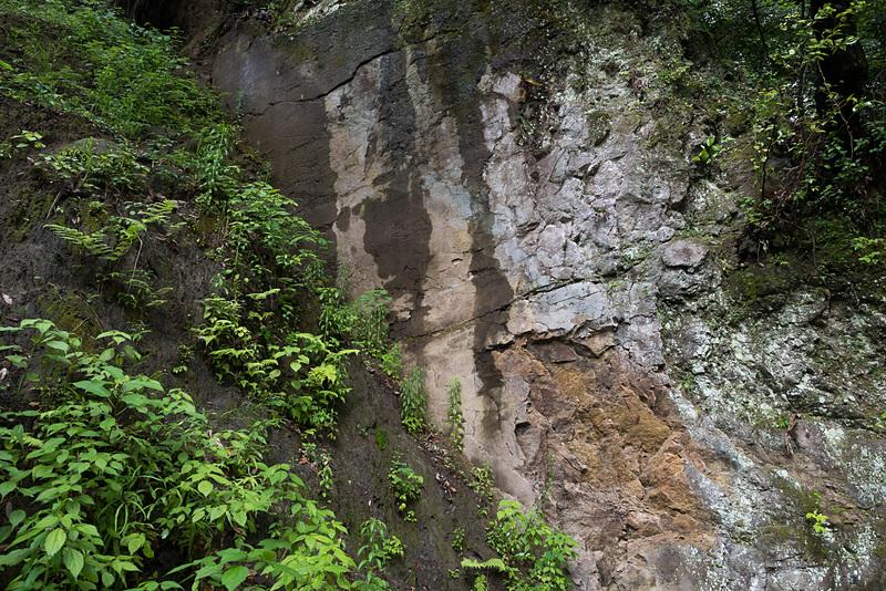 地震によって現われた布田川断層