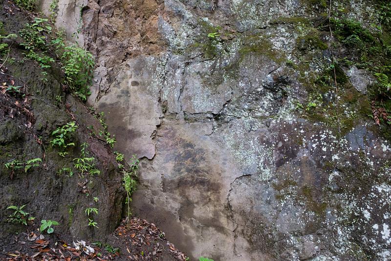 斜めにせり出している断層のずれを見ることができる
