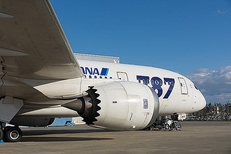 ANAはボーイング 787型機に搭載されているロールスロイス製エンジンの点検整備に伴い、9~10月に国際線212便を欠航する