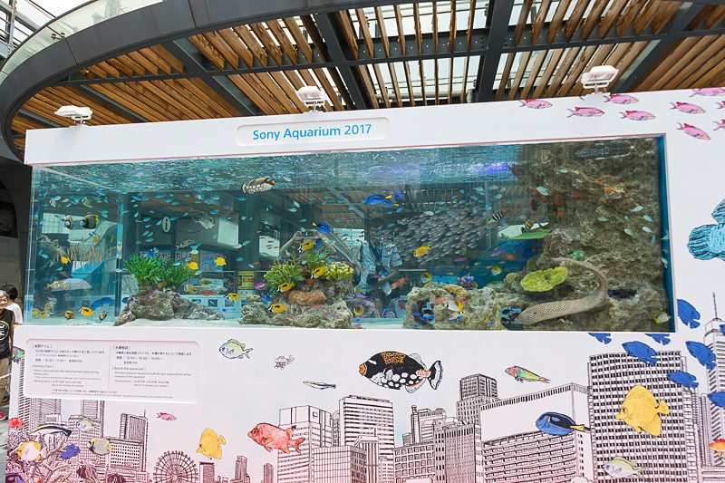 「Sony Aquarium 2017」の様子。2017年はソニービルのリニューアル工事のため、ソニーショールーム/ソニーストア銀座と、有楽町駅前広場の2会場を使って行なわれた