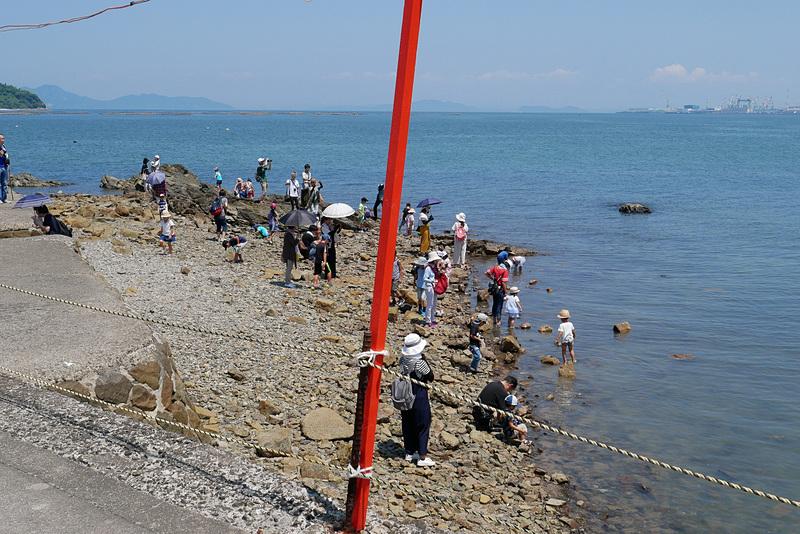 ちょうど引き潮だったため、周囲では水遊びをする親子連れも多く見られた