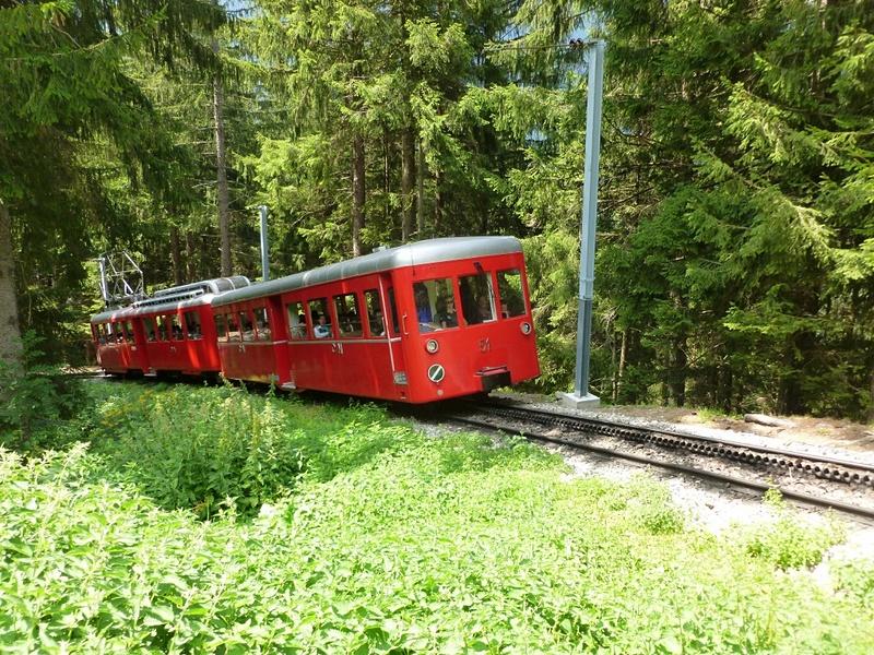 トレッキングの途中でこれから氷河に向かうモンタンヴェール鉄道に遭遇しました
