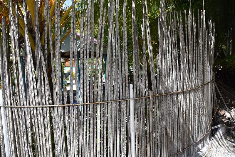 乾燥したヤシの葉は屋根や仕切りなどに使われる