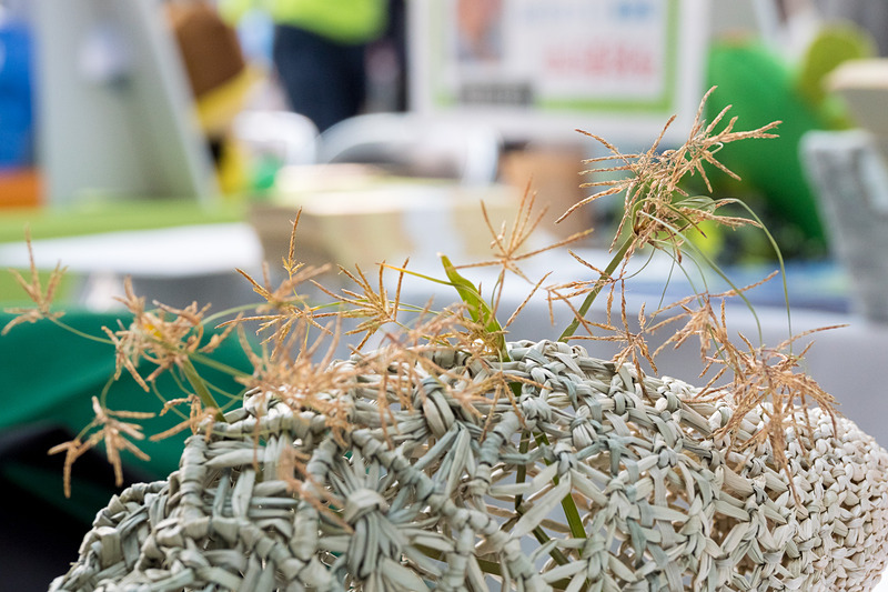 大分県国東市は、高級畳の材料として使われる七島藺(七島イ)を使った工芸品の販売のほか、七島藺のミサンガ作りワークショップを実施。写真右下は七島藺の花だ