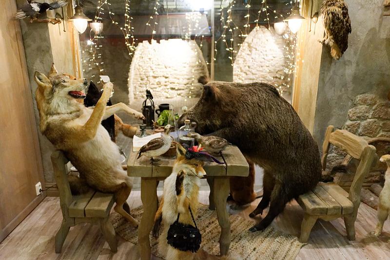 店内に入ると、家庭的な雰囲気の動物たちが剥製の姿でお出迎え