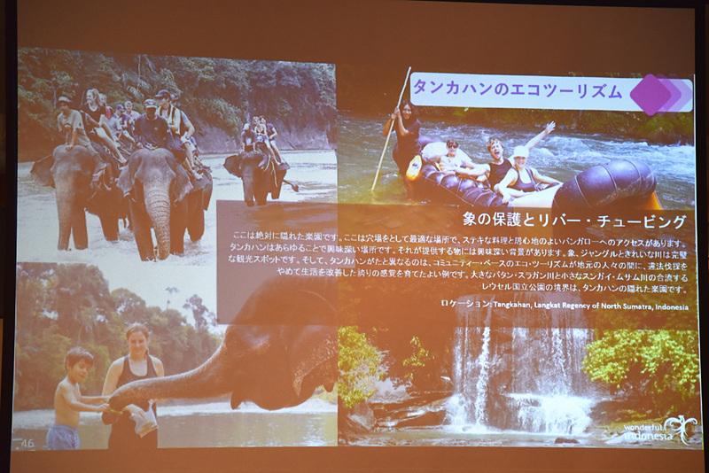 「タンカハンのエコツーリズム」で象たちに癒される体験も