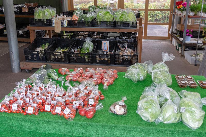 高知は野菜の生産も盛ん。直売所にはトマトや大根、白菜といった定番の野菜から珍しい農産物が所狭しと並んでいる。なかでも「東山」と呼ばれている蜜をまぶした干しイモは、この地域ならではの名産品とのことだ