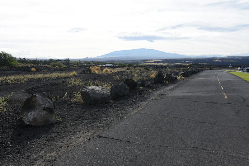 青い空と青い海、溶岩でできた黒い大地。これがハワイ島