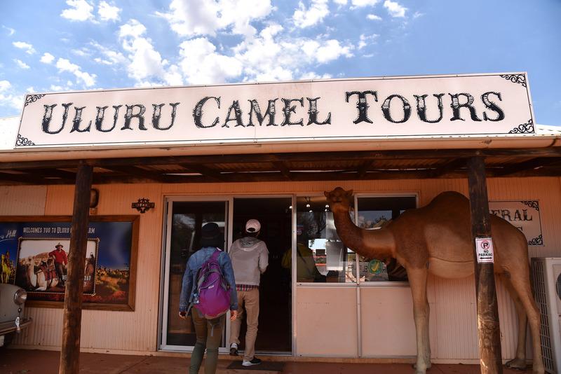 「Uluru Camel Tours」で受付&荷物を預けよう