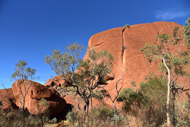岩の亀裂や色もきちんと意味がある