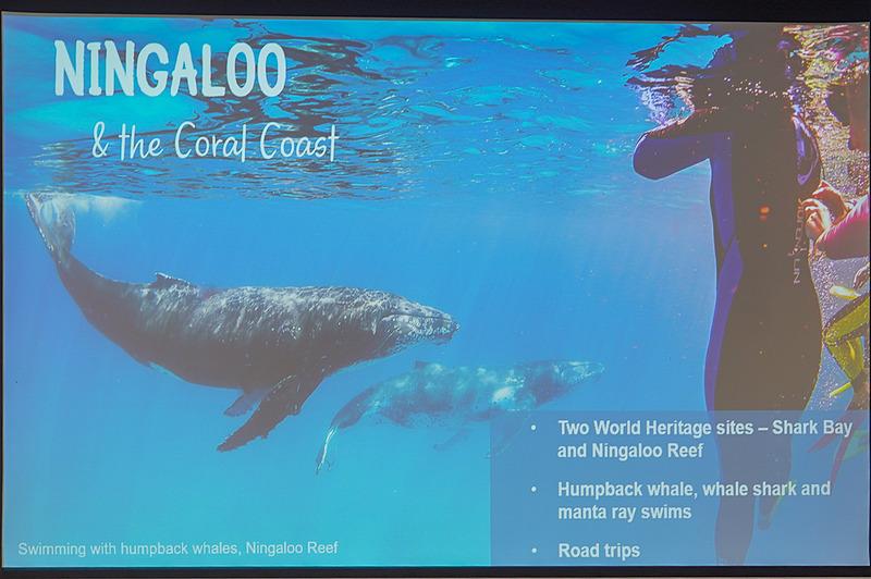 西オーストラリアの観光資源を説明するスライド