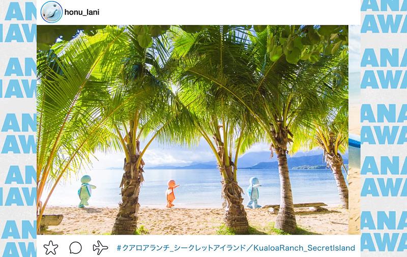 降機ビデオもHONUが登場。Instagram風にハワイの観光地を紹介するとともに、HONU(ウミガメ)保護の情報も取り入れる