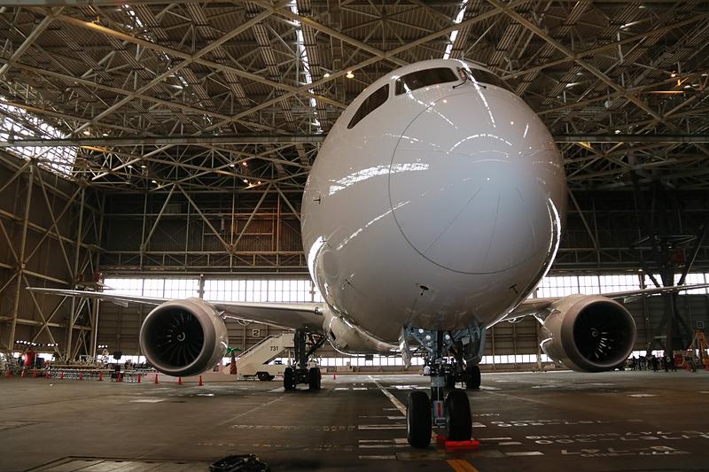 機体はボーイング 787-9型機(登録記号:JA873J)