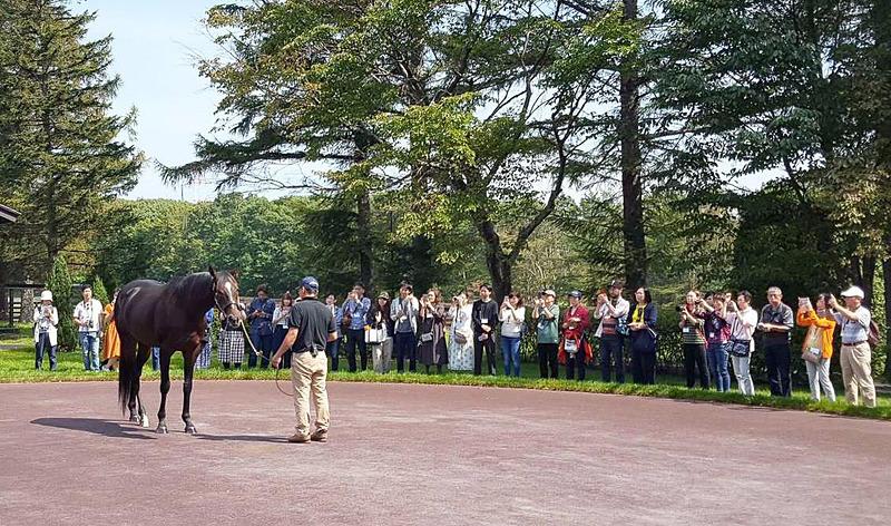 ノーザンホースパークは著名競走馬に会えるバスツアーを開催する