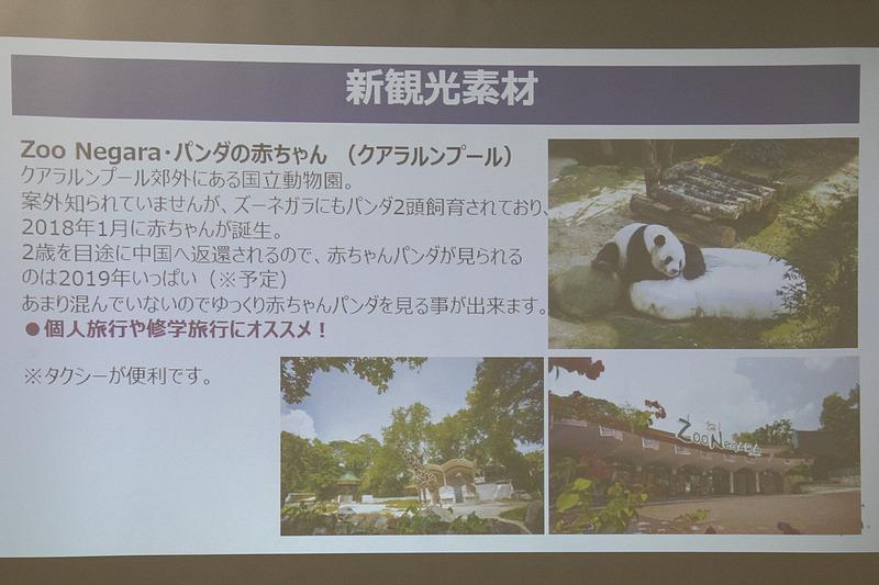 オランウータンやパンダを見学できたり、さまざまなアクティビティを楽しむことができる