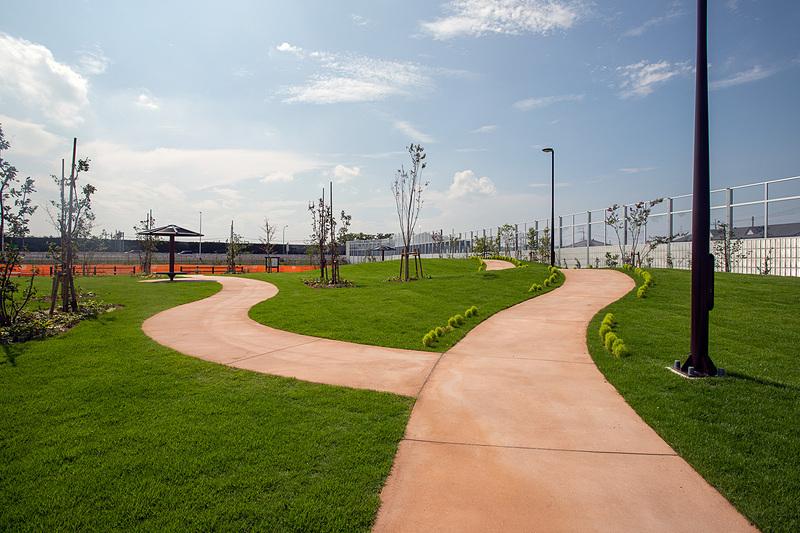 散歩もできる緑地も作られている