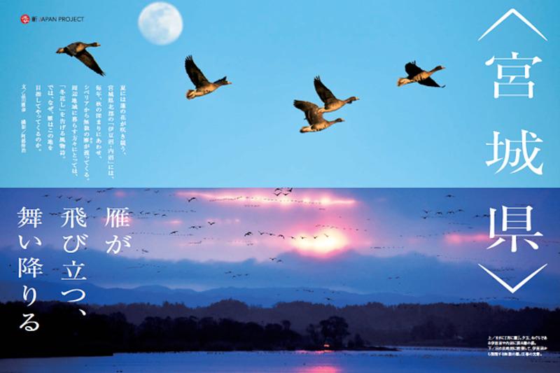 JALは地域活性化プロジェクト「新JAPAN PROJECT」において、9月は宮城県を特集する