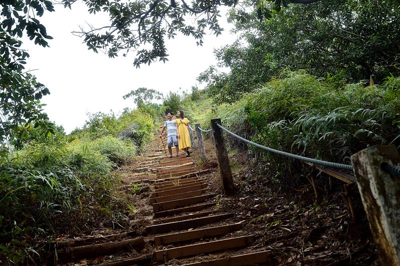 階段が整備されているので見た目より歩きやすい